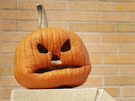 50-Best-Easy-Pumpkin-Carving-Ideas-Crafting-Patterns-2018-21