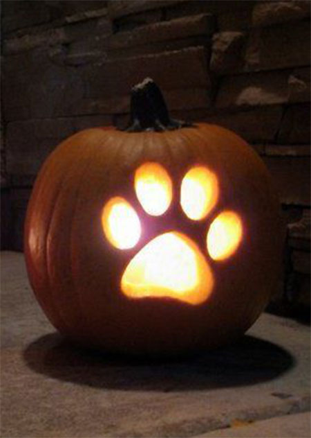50-Best-Easy-Pumpkin-Carving-Ideas-Crafting-Patterns-2018-29